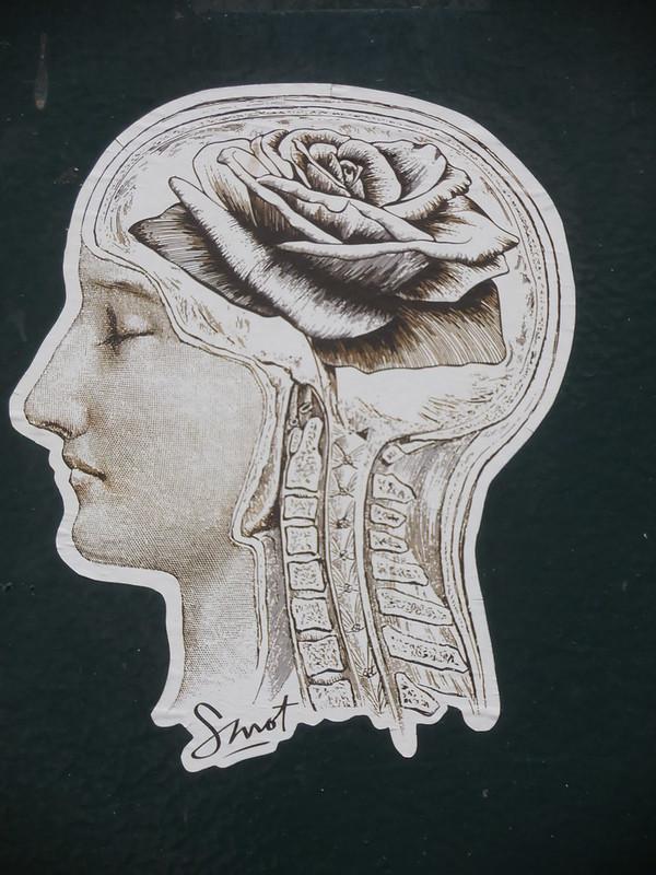 Café science contrôle cerveau